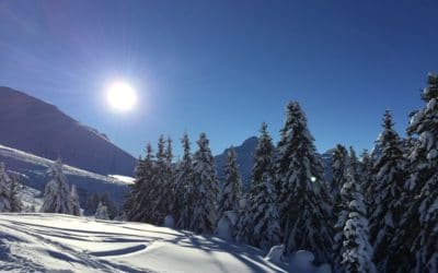 COVID-19 and booking a ski holiday in France 2021